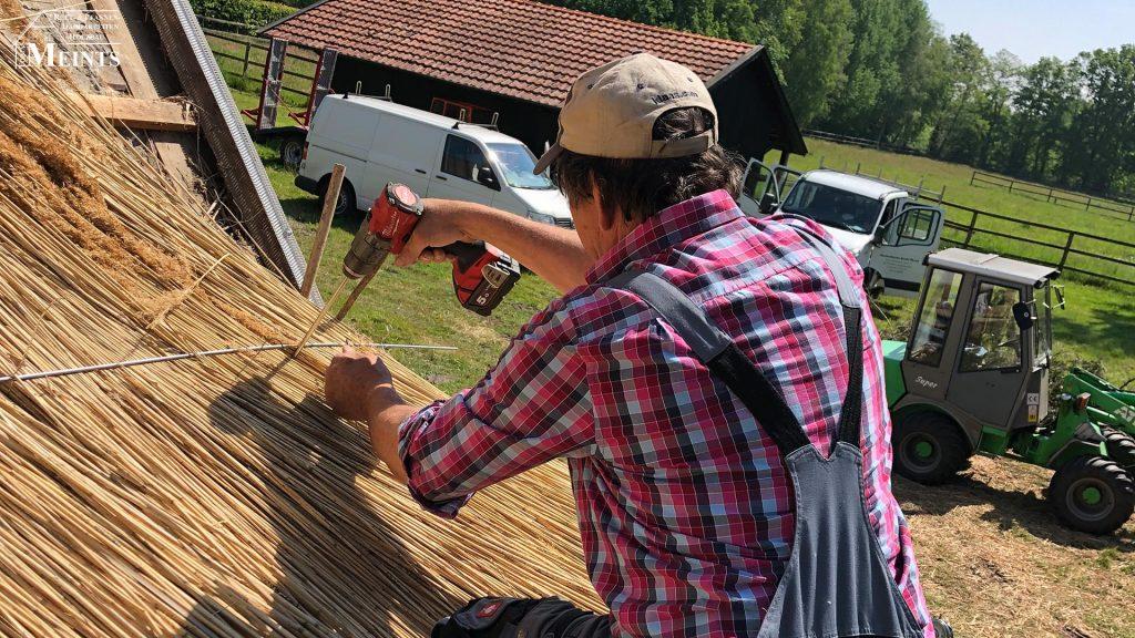 Naturreet Reetbedachung Ammerland Dachdecker Bad Zwischenahn 03