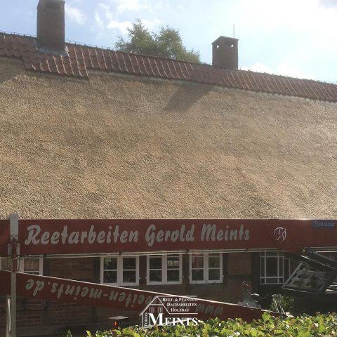 Pflegearbeiten Reet Abputzen Reetdachdecker Ammerland Wiefelstede Bad Zwischenahn 04