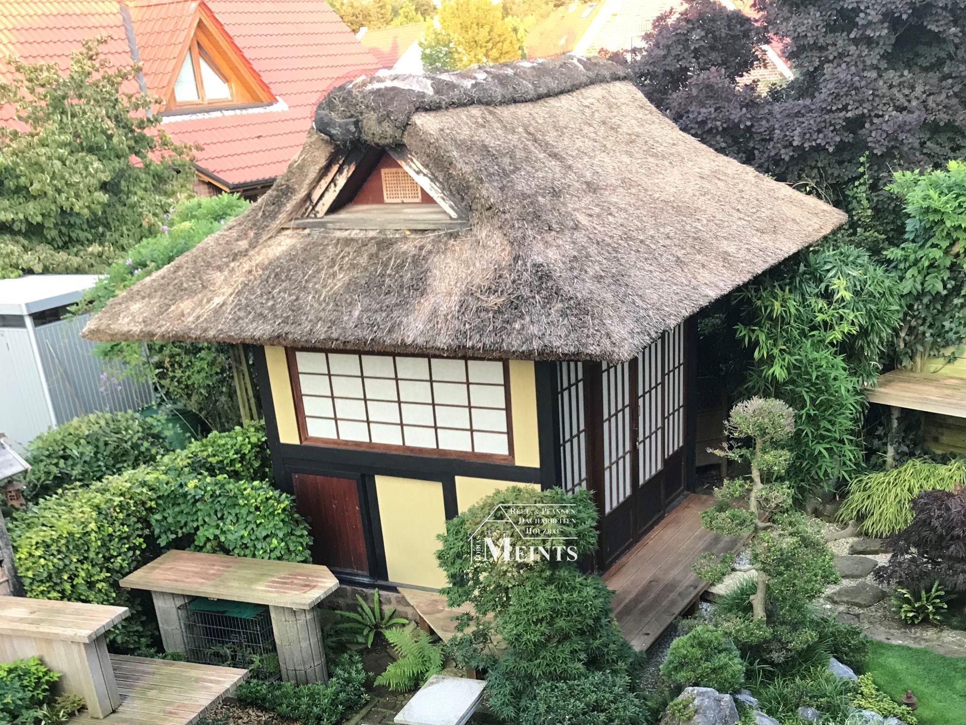 Teehaus Japangarten Pavillon ueberarbeiten abputzen Heidefirst Reetdach Reet Reetdachdecker Bad Zwischenahn Meints 1