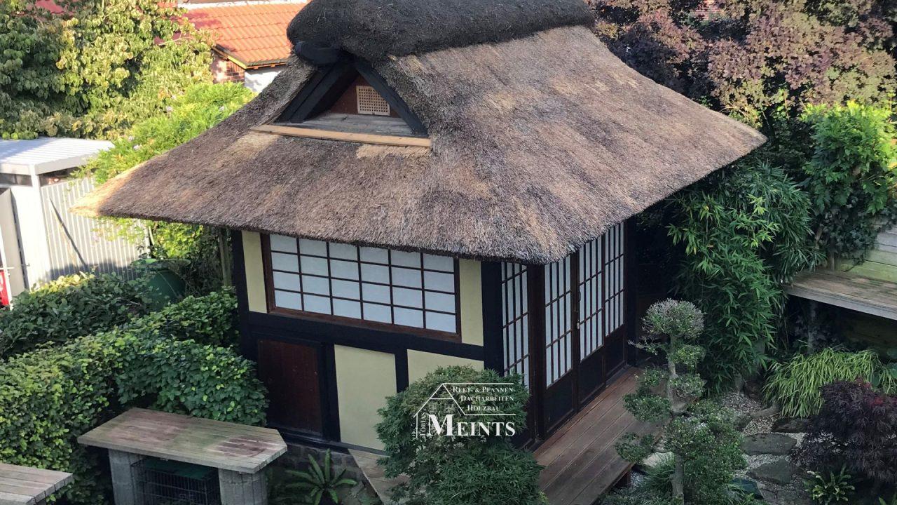 Teehaus Japangarten Pavillon ueberarbeiten abputzen Heidefirst Reetdach Reet Reetdachdecker Bad Zwischenahn Meints 2